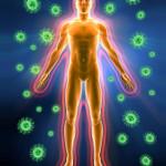 Шест помощника за имунната ни система през есента
