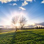 В Англия превръщат детската енергия в светлина