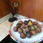 Смокинята – плодът на дълголетието