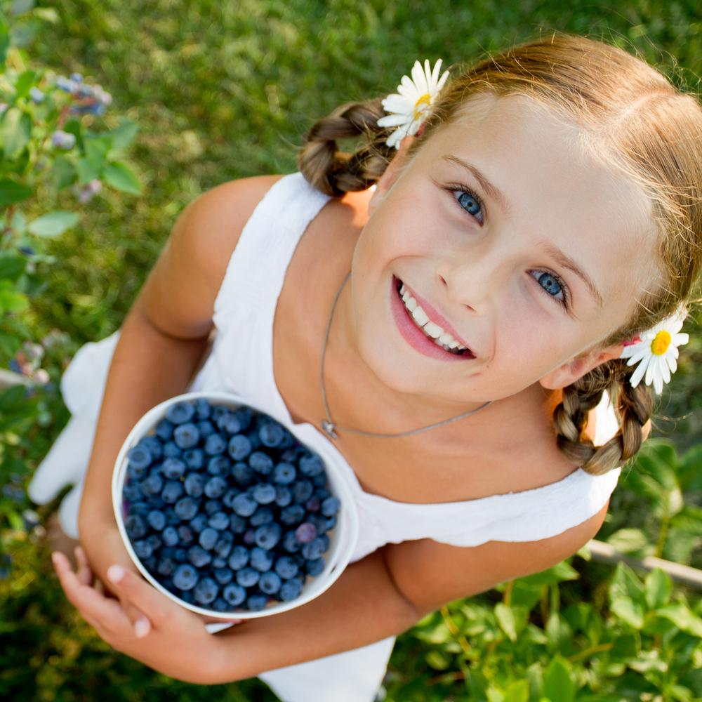 Photo of Нейно величество боровинката – антиоксидант в лилаво