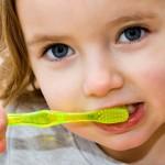 Първата детска четка влиза в употреба, когато поникнат 6-8 млечни зъба
