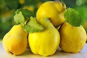 В плодовете на дюлята се откриват органични киселини (лимонова, ябълчена), пектинови и дъбилни вещества, захари, желязо и витамин С.