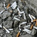 Д-р Хаджийска: По-малко ученици пушат и пият