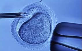Photo of Генетичен скрининг дава по-голям шанс за бебе в епруветка