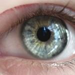 Изследване на зрението – съвети на офталмолога доц. д-р Коев