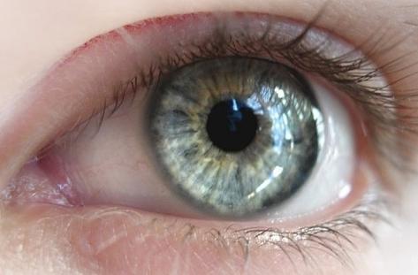 Photo of Изследване на зрението – съвети на офталмолога доц. д-р Коев