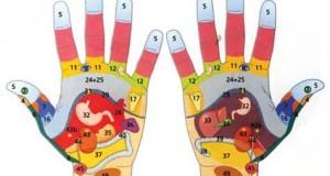 Рефлексология – наука, която изучава точките, разположени по ръцете