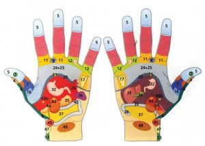 Рефлексология- наука, изучаваща точките, разположени по ръцете.