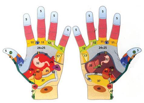 Photo of Рефлексология – наука, която изучава точките, разположени по ръцете
