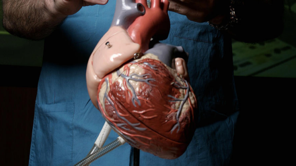 Photo of Френският пациент с изкуствено сърце издържа 75 дни