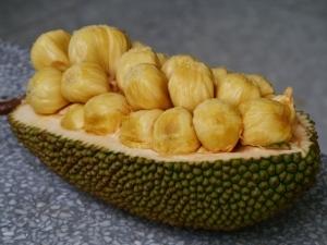 Photo of Джакфрут – най-големият плод, растящ на дърво