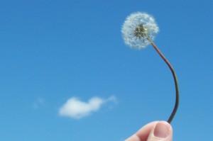 Щастливи хора са тези, които не забравят, че и зад облаците небето е синьо
