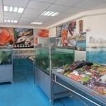 Модерен рибен магазин отвори врати на Покрития пазар в Русе