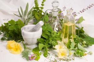 Натуралните масла или спиртните настойки от растения, които отблъскват комарите също не са за подценяване.