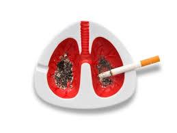 Отдавна е известно, че цигарите вредят не само на пушачите, но и на тези, които не пушат, но за принудени да вдишват дима от цигарите на своите близки, приятели и колеги.