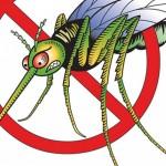 Ефикасни начини да се предпазим от комарите