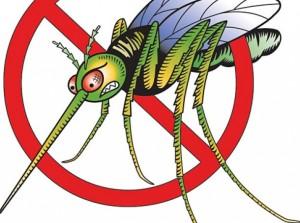 Ефикасни начини да се предпазим от комарите.