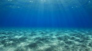 Океанската вода действа върху човешките клетки.
