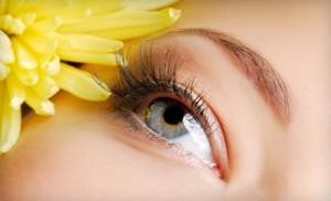 За доброто зрение трябва да се полагат грижи.