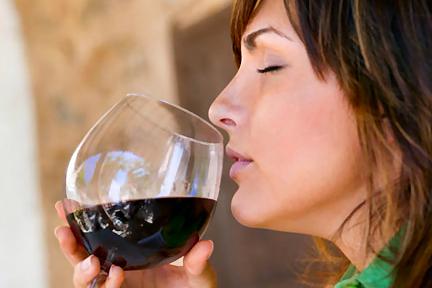 Photo of Дегустация на вина в Доходното