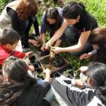 Лятна ваканция за децата от Русе организира социалният комплекс