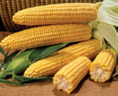 Photo of Пет мита за царевицата, които не знаете
