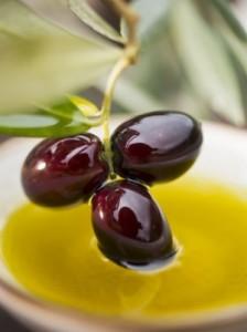 Маслината е символ на мира и сигурността още от дълбока древност