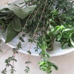 6 билки за здрав и спокоен сън