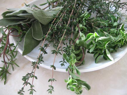 Photo of 6 билки за здрав и спокоен сън