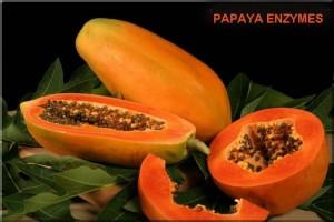Ако приемаме натурални папая ензими, ще можем въпреки възрастта да живеем комфортно.