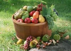 Празник на плодородието ще се проведе в Русе