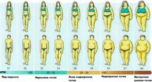 . Интересното е, че редица проучвания показват, че при жените умерената консумация на пиво се свързва с по-нисък ИТМ, което я прави изключително подходяща за част от хранителния режим на дамите с наднормено тегло.