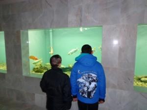 Децата останаха впечатлени и от аквариумите