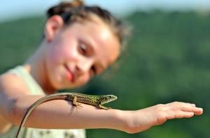 """""""Еквилибриум"""" учи младите хора да поемат отговорност за собственото си бъдеще."""