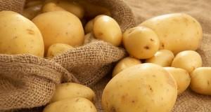 Картофите се ползват и в медицината