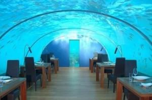 Разнообразни напитки, всякакви водни спортове, сливане със света на морските обитатели и безкрайни слънчеви бани.