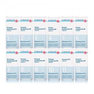 12-те соли на д-р Шуслер – големият успех на минималното лечение.