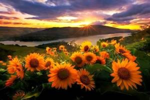 Според създателя на Бялото братство обаче слънцето е най-лечебно от 8 до 9 часа сутринта.