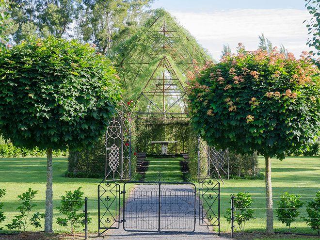 Photo of Новозеландец построи църква от живи дървета