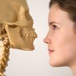 Хранене за здрави кости през целия живот