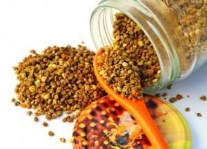 Събирането на една чаена лъжичка прашец отнема на една пчела по осем часа на ден в продължение на един месец.