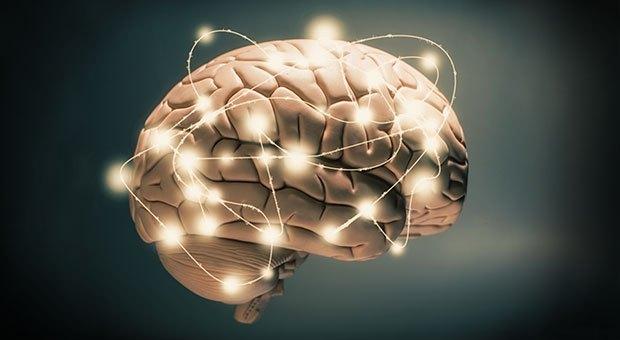 Глук споделя, че предишни изследвания са показали, че затлъстелите хора имат по-ниски нива на мозъчна активност в лявото полукълбо на главния мозък след хранене в сравнение със слабите хора.