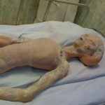 Мексикански учени показват в София мумия на извънземно