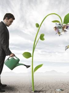 От нас зависи как ще се грижим за дървото на парите...