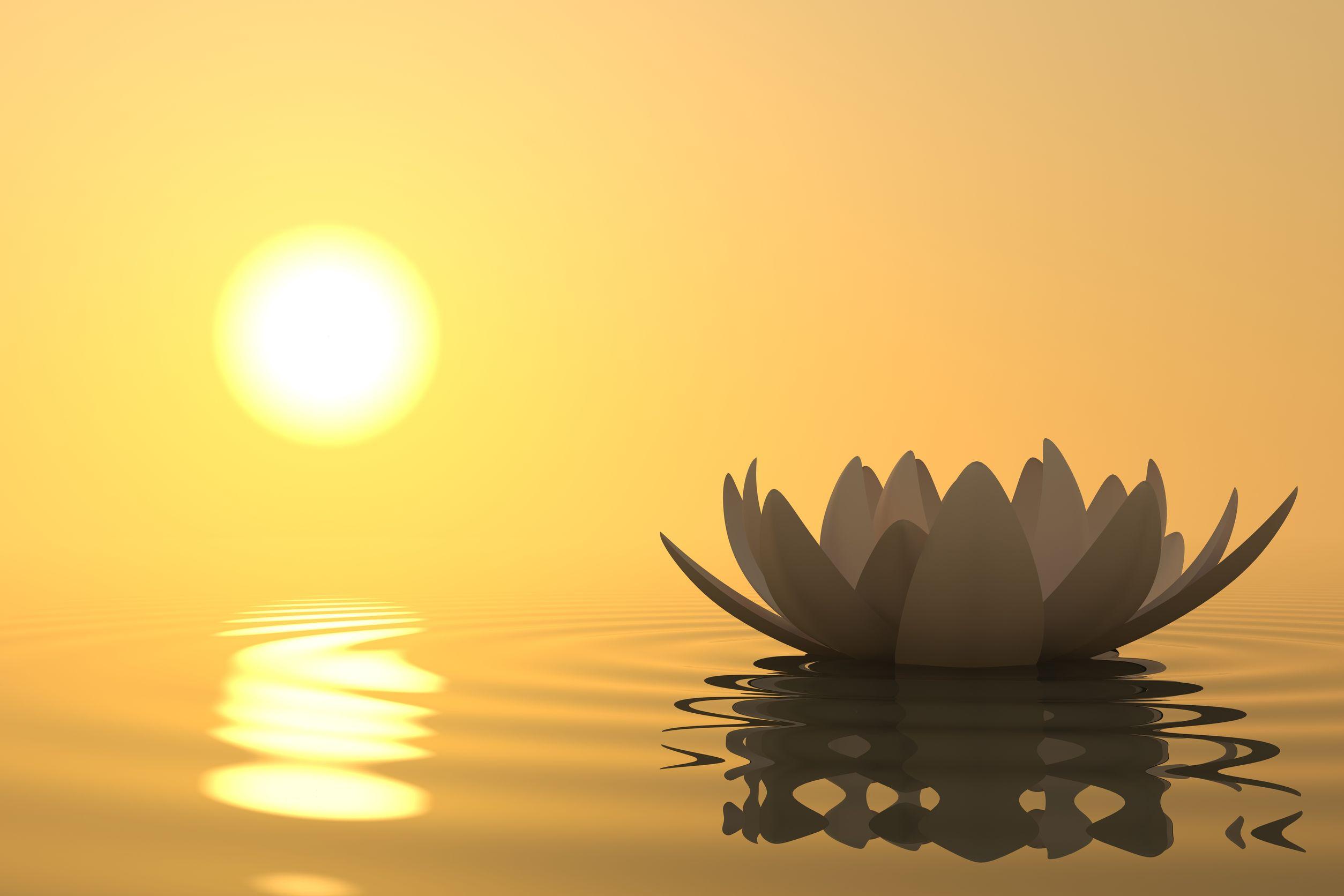 Photo of Медитация за осъзнатост влезе в класните стаи