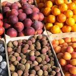Биохраните и високата цена