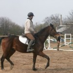 """""""Кентавър – Русе"""" ни кани да опознаем света на конете"""
