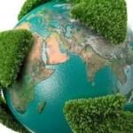 За живота на дивите животни! 5 юни – Световен ден на околната среда
