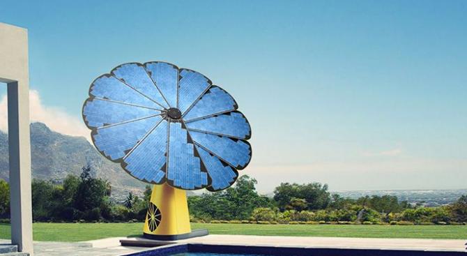 Photo of Умно цвете произвежда енергия