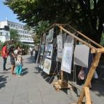 Арт разходка с лодка събра млади творци в Русе